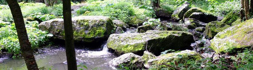 Ein Flusslauf