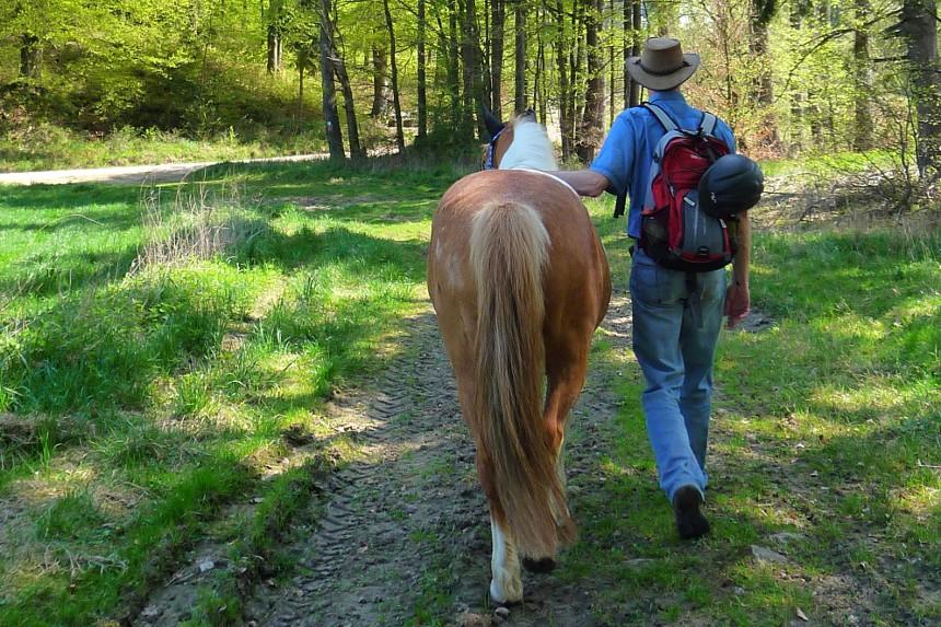 Wanderung mit Pferd