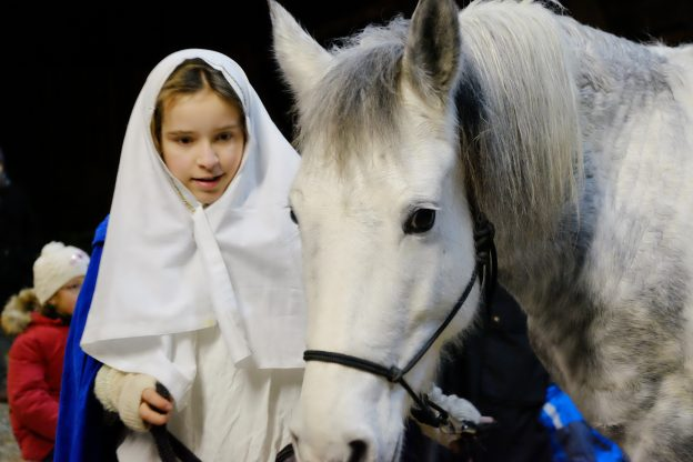 Maria mit Pferd